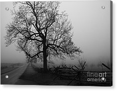 Repose In Mist Acrylic Print by David Rucker