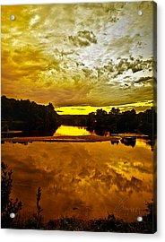 Repose Acrylic Print by Tom Cameron