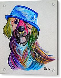 Lab Repurposing The Water Bowl Acrylic Print by Eloise Schneider