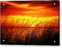 Reservoir Sunset 3 Acrylic Print by Jim Albritton