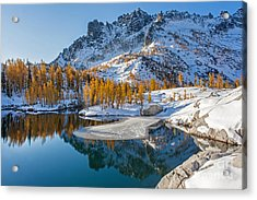 Resplendent Alpine Autumn Acrylic Print by Mike Reid