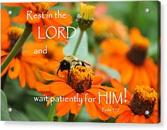 Rest In The Lord Acrylic Print by Barbara Stellwagen