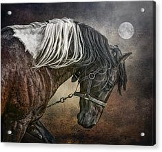 Acrylic Print featuring the photograph Restless Moon by Brian Tarr