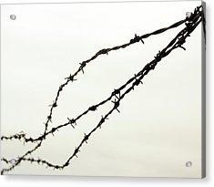 Restricted Acrylic Print by Kaleidoscopik Photography