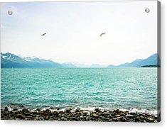 Resurrection Bay With Sea Gulls Acrylic Print