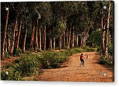 Returning Home Acrylic Print by Mary Jo Allen