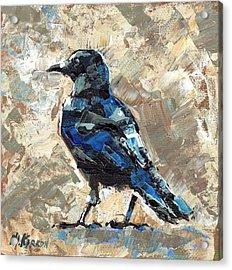 Revelstoke Crow Acrylic Print by Christine Karron