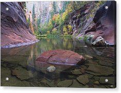 Revisited Acrylic Print by Peter Coskun
