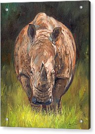 Rhino Acrylic Print by David Stribbling