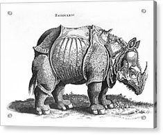 Rhinoceros No 76 From Historia Animalium By Conrad Gesner  Acrylic Print by Albrecht Durer