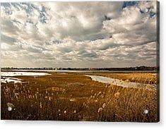 Rhode Island Marshes 1 Acrylic Print