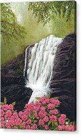 Rhodedendron Falls Acrylic Print