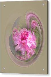Rhododendron Awakening Acrylic Print