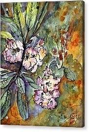 Rhododendron Watercolor And Ink Acrylic Print