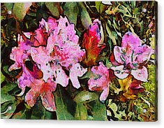 Acrylic Print featuring the digital art Rhododendrons One by Spyder Webb