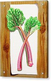 Rhubarb Tasty Botanical Study Acrylic Print by Irina Sztukowski