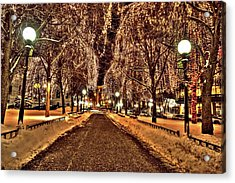 Rice Park Saint Paul Acrylic Print