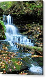 Ricketts Glen Hidden Waterfall Acrylic Print