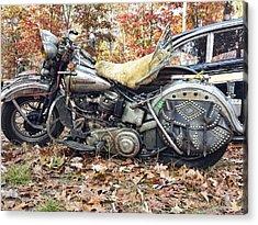 Rider Acrylic Print