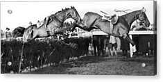 Riderless Horses Take Jump Acrylic Print by Underwood Archives