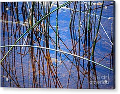 Ridges Reflection Acrylic Print