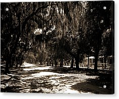 Ridgewood Ave, Daytona, Fla, Roads, Spanish Moss Acrylic Print by Litz Collection