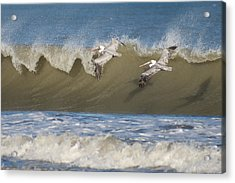 Acrylic Print featuring the photograph Riding The Wave by Gregg Southard