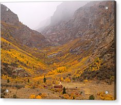 Acrylic Print featuring the photograph Fall Colors And Fog by Jenessa Rahn