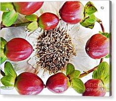 Ring Around The Garlic Acrylic Print by Sarah Loft