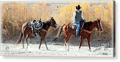 Acrylic Print featuring the photograph Rio Grande Cowboy by Barbara Chichester