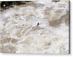 Rio Grande Kayaking Acrylic Print by Steven Ralser