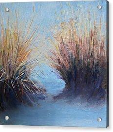 Rio Grande Acrylic Print by Rosemarie Hakim