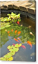 Ripple Effect  Acrylic Print by Puzzles Shum