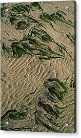 Ripple Pattern On Sand Dunes Acrylic Print