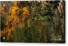Ripples And Reflections Acrylic Print