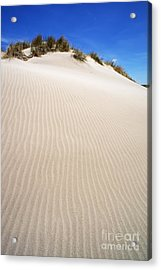 Ripples In Sand Dune Acrylic Print by Sami Sarkis
