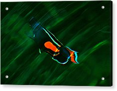 Acrylic Print featuring the photograph Ripples In The Water by Lehua Pekelo-Stearns