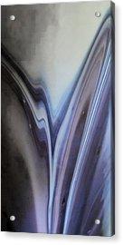 Rippling Color Waves Against Concentric Ellipses Acrylic Print by Sandra Pena de Ortiz