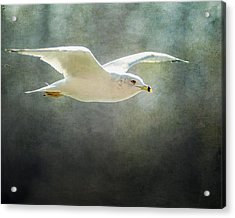 Rise Above Acrylic Print