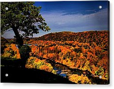 Acrylic Print featuring the photograph Rise And Look Around You by Robert McCubbin