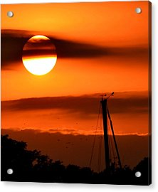 Rise And Shine Acrylic Print by Deena Stoddard