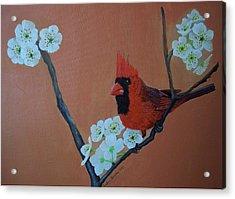 Rita's Redbird For Kevin Acrylic Print by Barbara Samples
