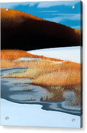 River And Reeds Acrylic Print by Bruce Richardson