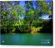 River Beauty Acrylic Print