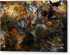 Acrylic Print featuring the photograph River Color by Allen Carroll