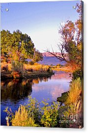 River Colors Acrylic Print by Marilyn Diaz