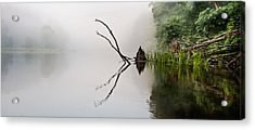 River Crabs Acrylic Print by Tom Cameron
