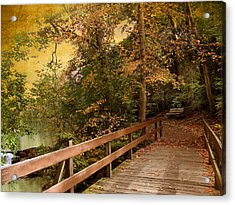 River Crossing Acrylic Print by Jessica Jenney