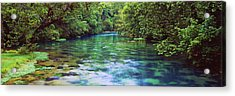 River Flowing Through A Forest, Big Acrylic Print