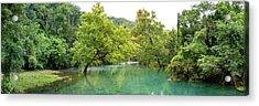 River Flowing Through A Forest, Ozark Acrylic Print